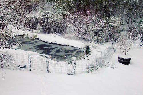 Hiver 2005/2006, premières neiges en novembre 2005 et formation de la glace