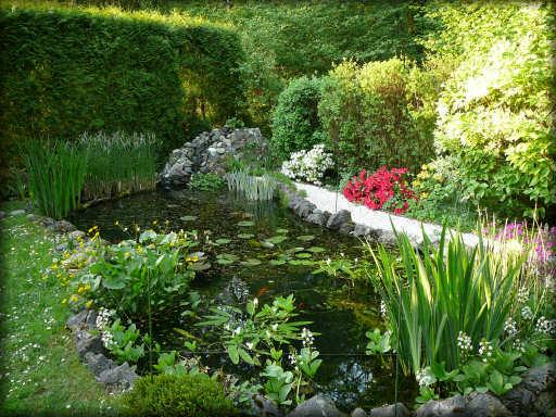 Avril 2007, jardin d'eau à son apogée !