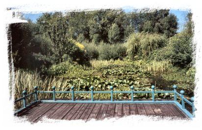 Bambois : le lac et les jardins