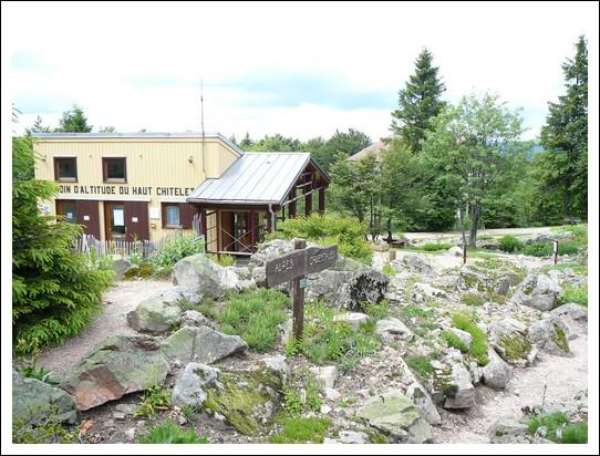 Le jardin d 39 altitude du haut chitelet - Jardin d altitude du haut chitelet ...