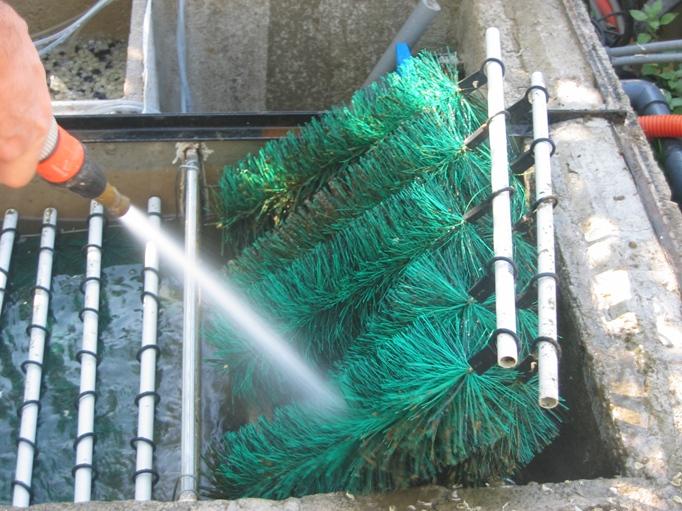 L 39 entretien du bassin de jardin for Filtre bassin poisson