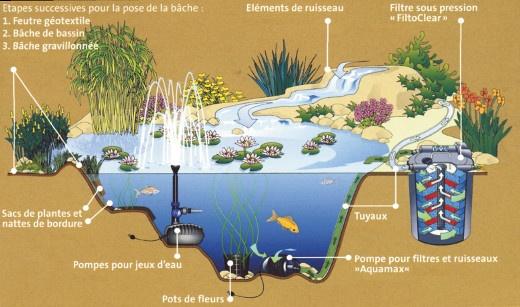 Les diff rents types de filtres pour bassin de jardin for Pompe bassin exterieur poisson
