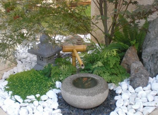 Le jardin zen for Jardin zen plantes