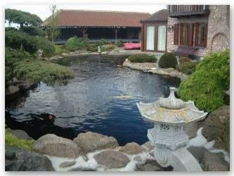 Cr er son bassin de jardin en r sine polyester for Creer bassin poisson